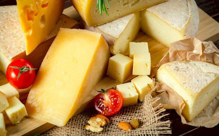 Несколько интересных фактов о сырах