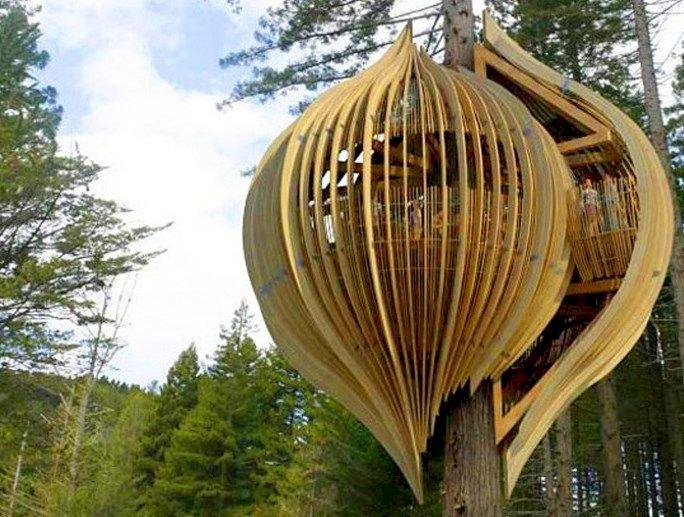 Ресторан в форме гнезда